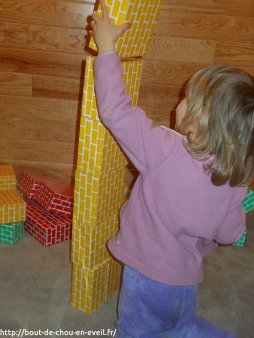 Constructions avec des briques en carton