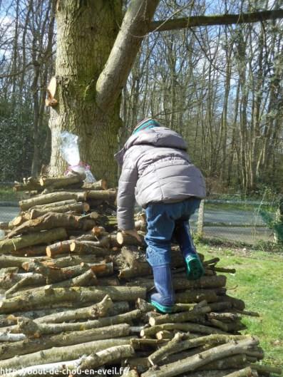 Pâques et chasse aux oeufs