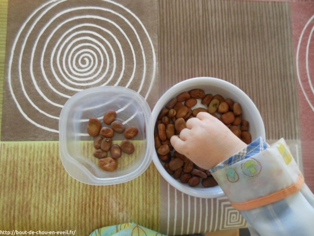 Activité Montessori transvaser