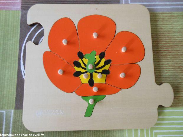 Activité Montessori : puzzles botaniques
