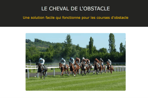 Le cheval de l'obstacle