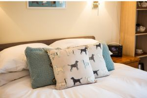 dog pillows on bed- Westleigh in Beer, Devon, is ultra-dog friendly
