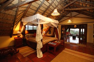 Horse riding holidays in Africa, Waterberg Ant's Nest Weaver suite