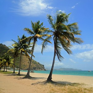 On of many idyllic beaches on St Kitts
