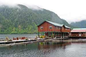 Great Bear Lodge - one of our top 6 wildlife lodges