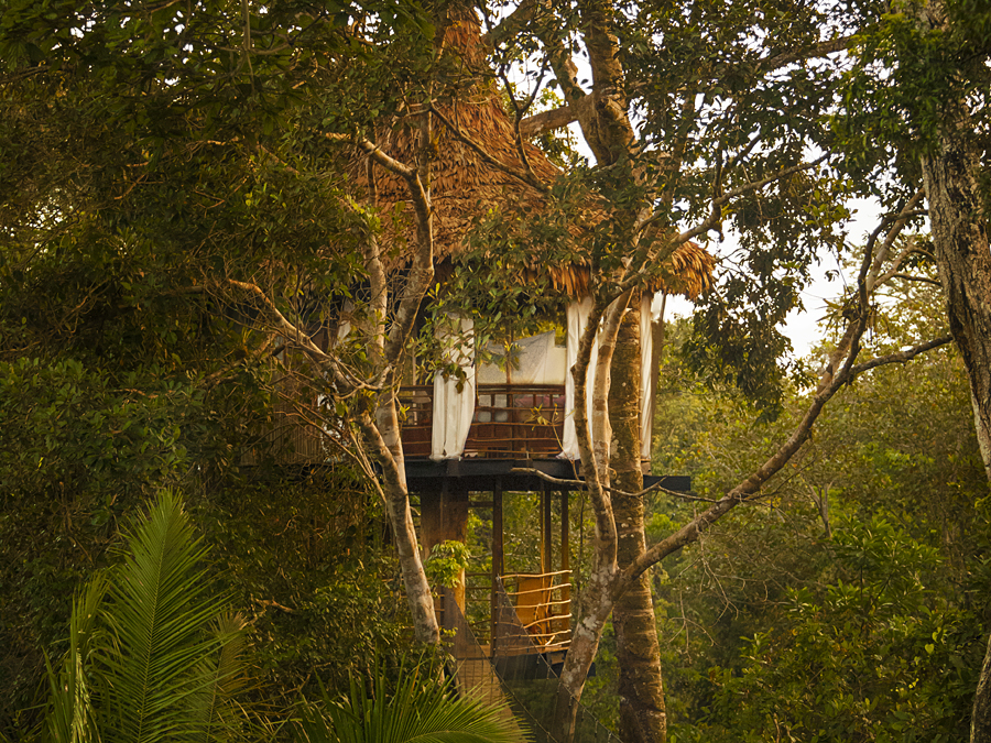 Treehouse Lodge in Peru, one of our favourite treehouse holidays in the world