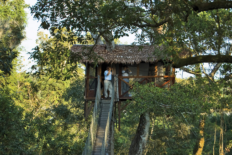 Inkaterra Canopy Treehouse, Peru