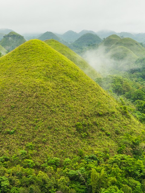 Bohol : chocolate hills
