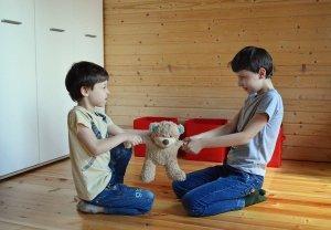 zwei Jungs streiten sich um einen Spielzeug Teddybären Ehe