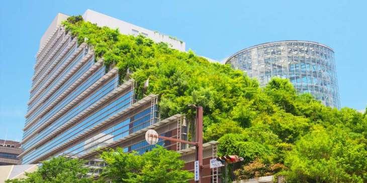 Groen in de wijk goed voor gezondheid