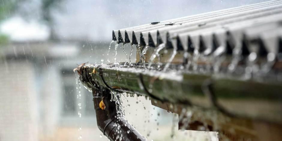 Meerderheid Nederlanders ervaart wateroverlast
