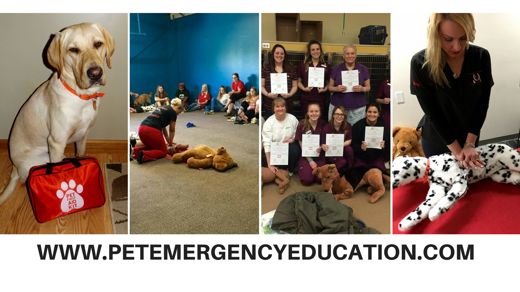 Pet cpr and first aid certification class bow chika wow town become certified in canine and feline cpr and first aid the instructors from pet emergency education are nationally recognized for providing pet cpr xflitez Image collections