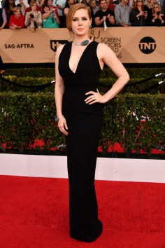 Mandatory Credit: Photo by Rob Latour/REX/Shutterstock (8137126fc) Amy Adams The 23rd Annual Screen Actors Guild Awards, Arrivals, Los Angeles, USA - 29 Jan 2017