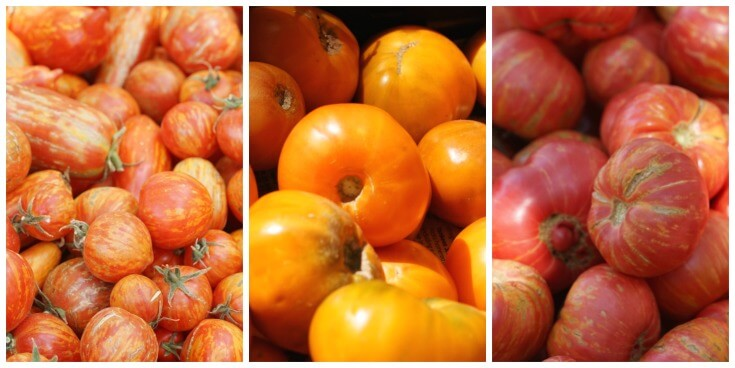 Different tomatoes taste differently.