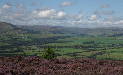 The Trough hidden in the Bowland Fells.