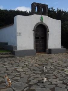 Ermita Santa Clara and cats.