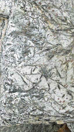 Tourmaline crystals in the granite?