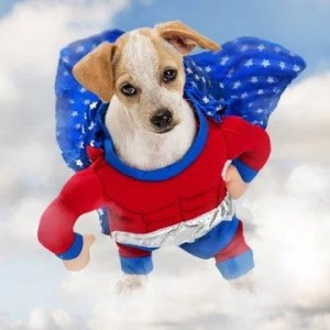 Superhero DC & Marvel Design Dog Harnesses