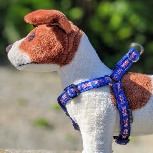 patriotic dog harness