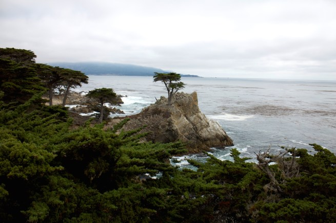 monterey cypress point lookout