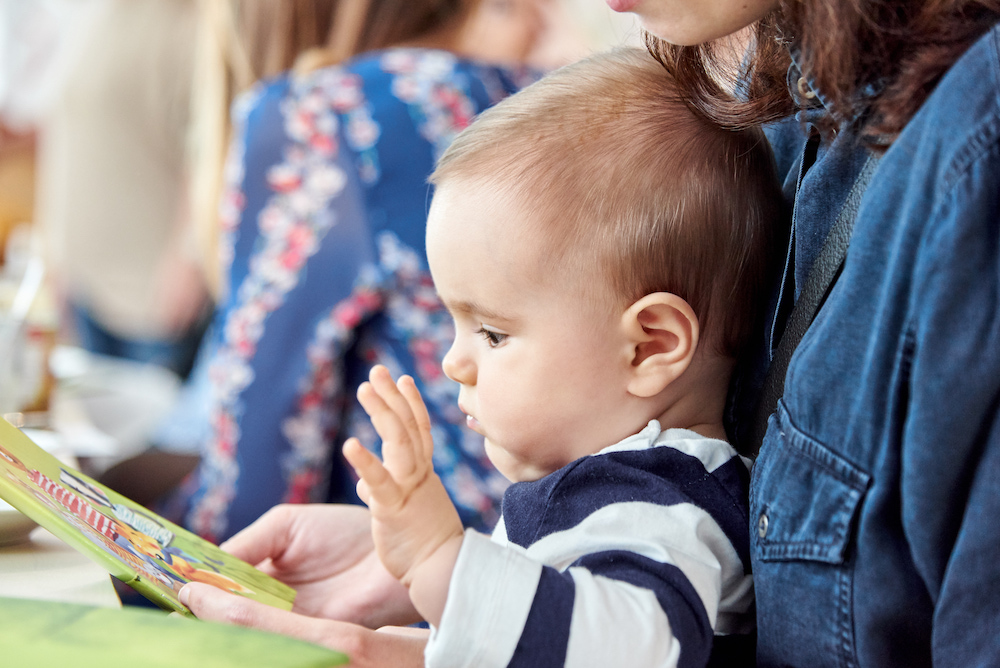 Hofer Bio Babynahrung