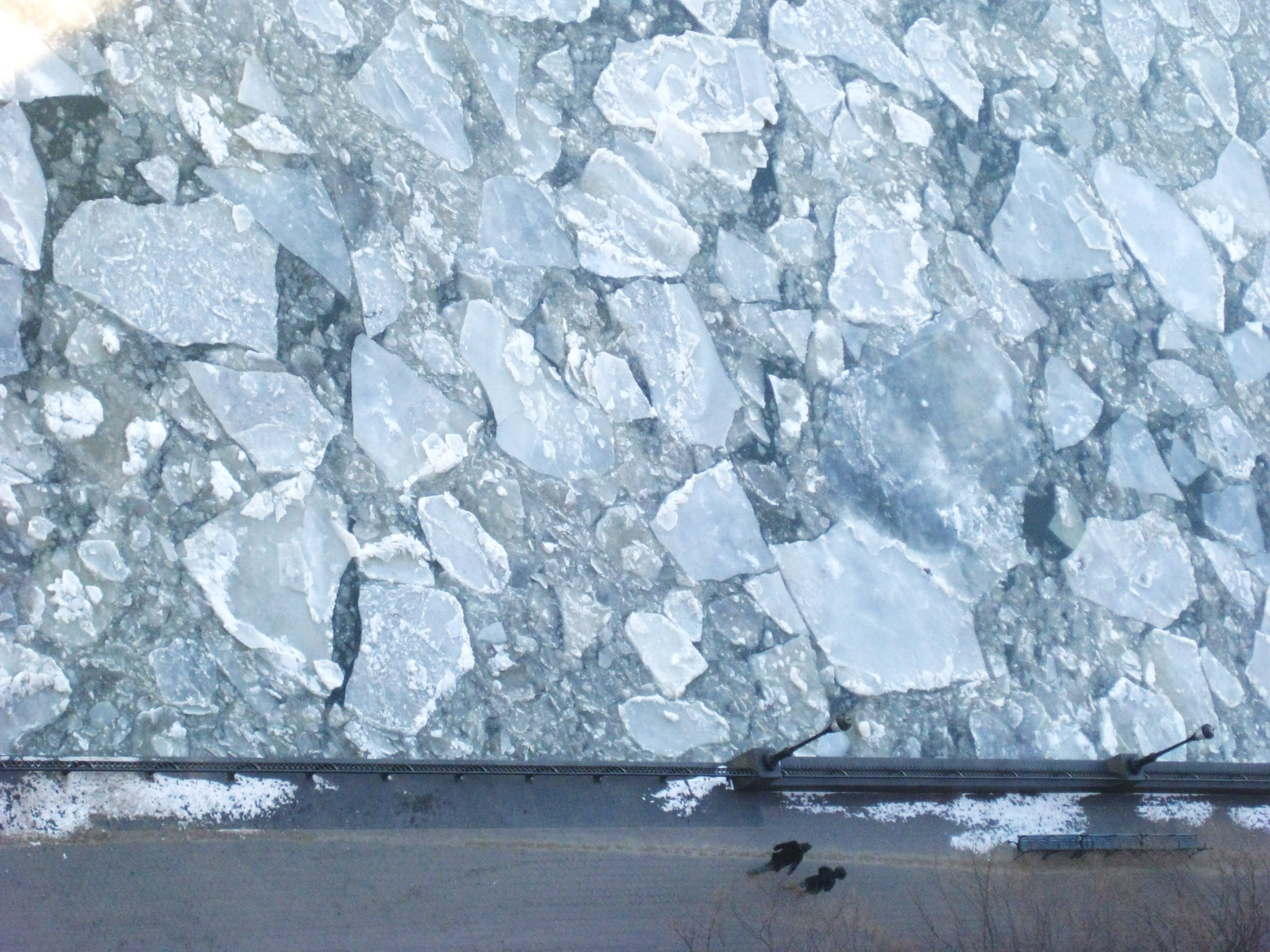 icescale1