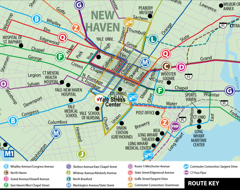 New Haven Bus Map