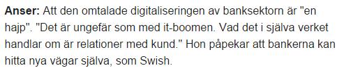 Digitaliseringen en hajp_Annika Falkengren_SEB