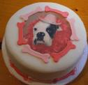 Boxer dog birthday cake pictures