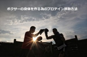 ボクサーの減量とプロテイン摂取方法