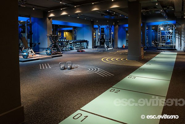 Crossfit home gym for rich people