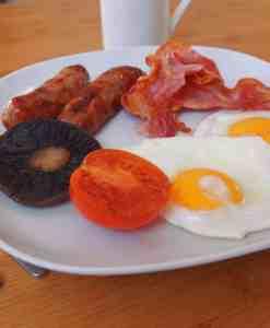 Free-range Breakfast