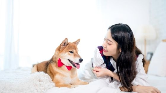 ในร่างกายของสุนัจจะมีเชื้อไวรัสอยู่หลายชนิดที่ยังไม่แสดงอาการ โดยเฉพาะโรคพิษสุนัขบ้าที่สามารถติดมาสู่คนและเป็นอันตราย