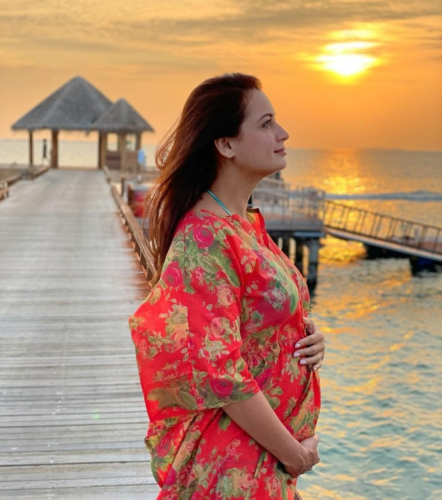 Dia Mirza Replies To A Troll Who Asks Her About Why Didn't She Reveal About Her Pregnancy Before Marriage!