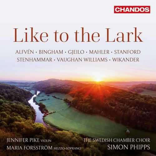 Phipps, Pike, Forsstrom: Like to Lark (24/96 FLAC)