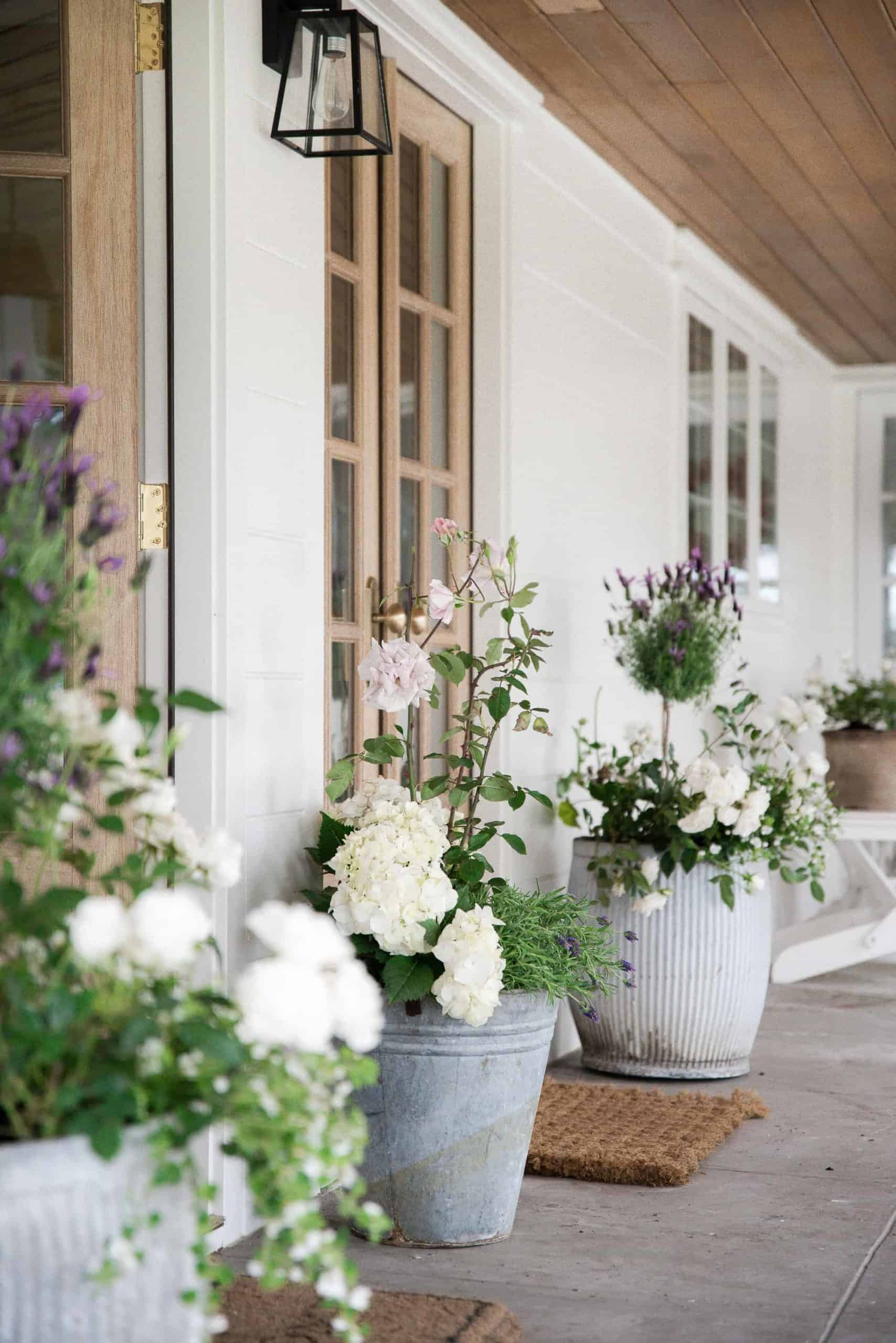 Gorgeous flower pots on a farmhouse porch with white flowers and lavender.