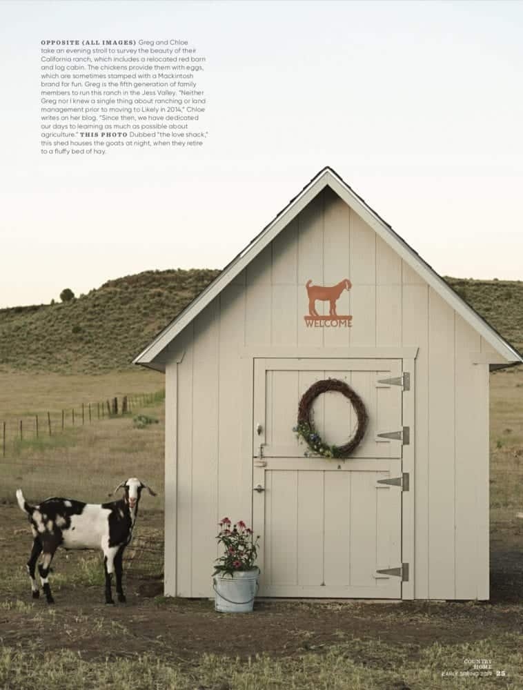 White Outdoor Storage Shed with Goat