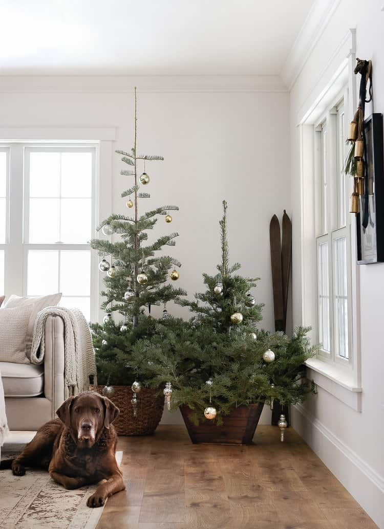 Mercury glass and greenery are the perfect touches for a simple farmhouse Christmas.