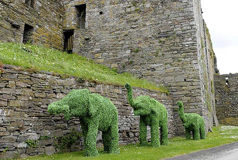 Animals and form topiaries for awesome outdoors and interesting indoors