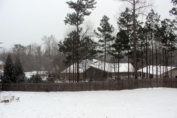 snow20149small