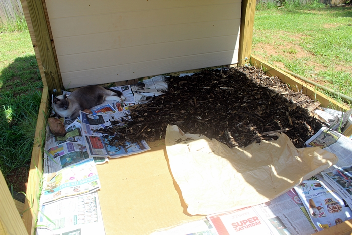 bottom of tower with mulch and newspaper