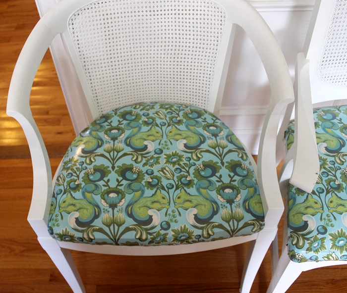 floral print teal fabric with squirrels