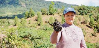 El premio exaltará la labor relaizada por las empresas y personas a favor del medio ambiente en Boyacá.