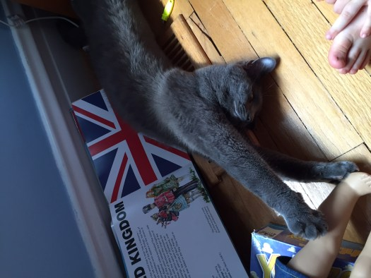 Pepper learns about the Union Jack.