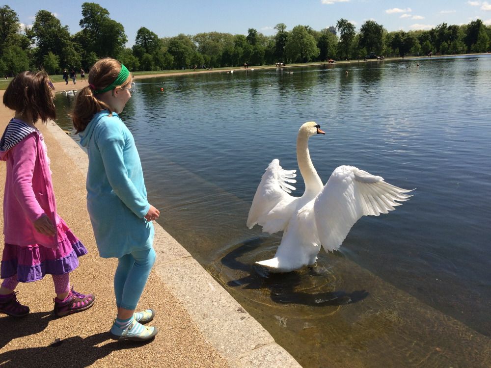 The Glories of Kensington: Uncovering magic inside and out