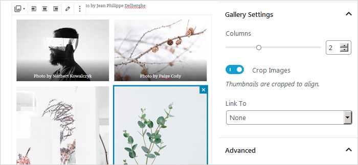 Gallery Block Settings in WP