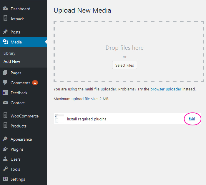 How to add media file in WordPress