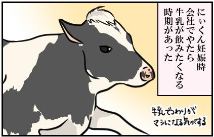 にぃくん妊娠時、会社でやたら牛乳が飲みたくなる時期があった。(牛乳でつわりがマシになる気がする。)
