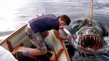 beneath fish