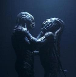 species 3 alien coupling